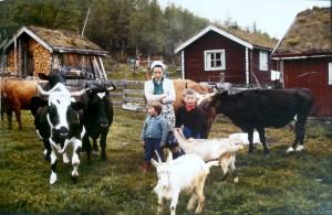 Emma Øvergård med barna Vigdis og Jan Erik. Bjellekua Vennlig står foran til venstre. Foto: Ola Øvergård.