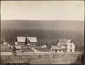 Koppang stasjon(1880–1890. Foto: Axel Lindahl) Kilde: Wikipedia